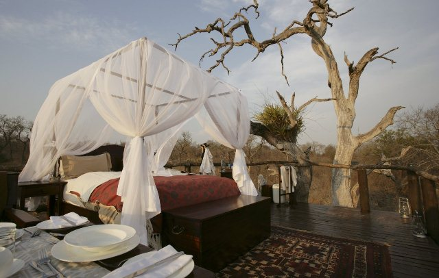 Chalkley-Treehouse-Amazing-Outdoor-Hotel-in-Lion-Sands-02