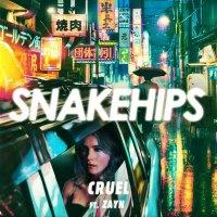 snakehips-zayn-cruel